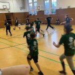 Faustball (4)